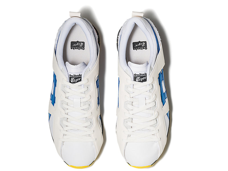 FABILAC WHITE/DIRECTORE BLUE 21 TP