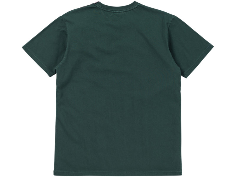 WASHED GRAPHIC T-SHIRT HUNTER GREEN/BURGUNDY 5 BK