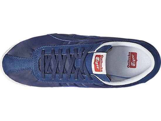 TIGER CORSAIR INDIGO BLUE/INDIGO BLUE